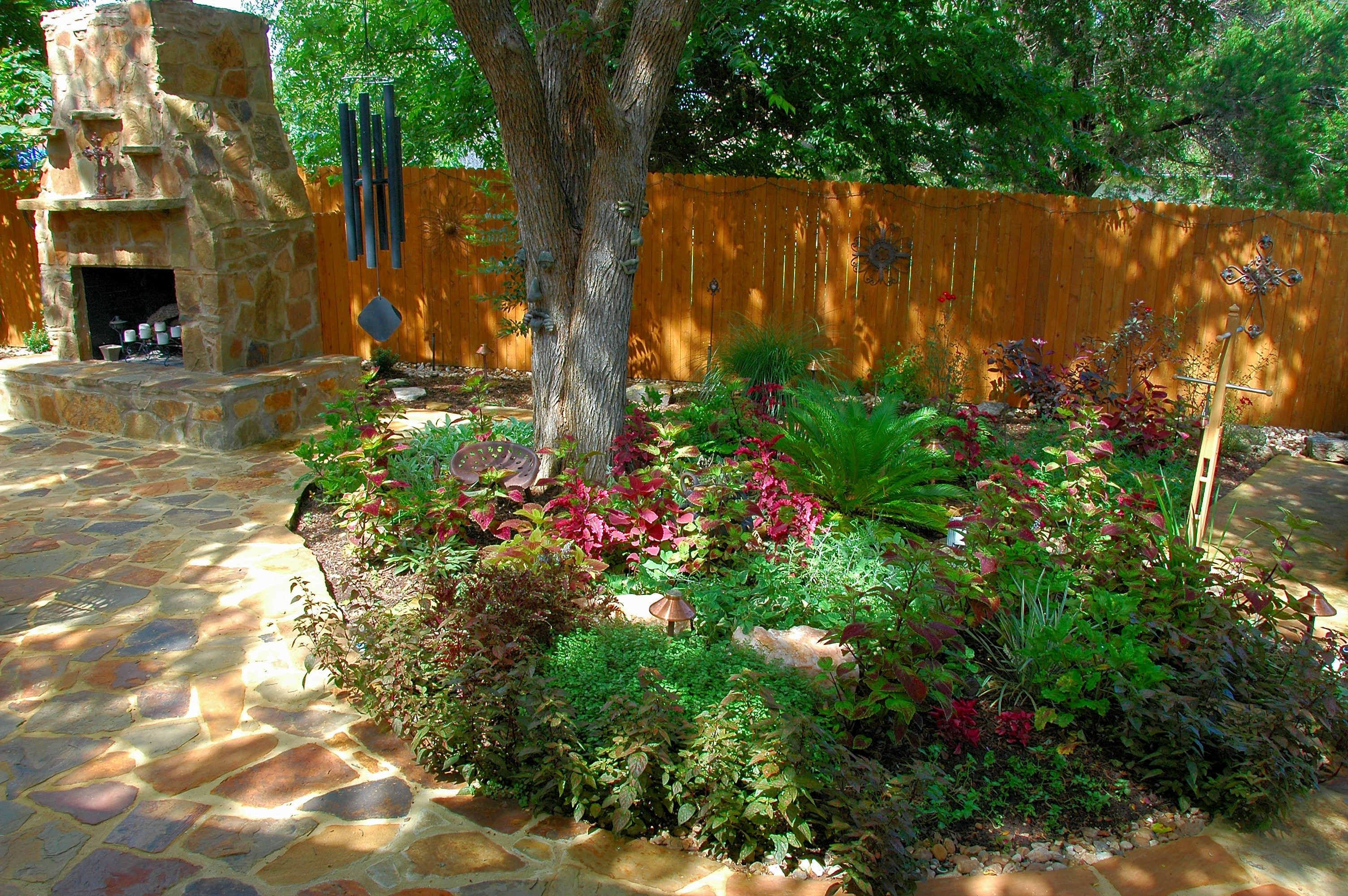 Windsor park austin red sun landscape design red sun for Shade garden designs