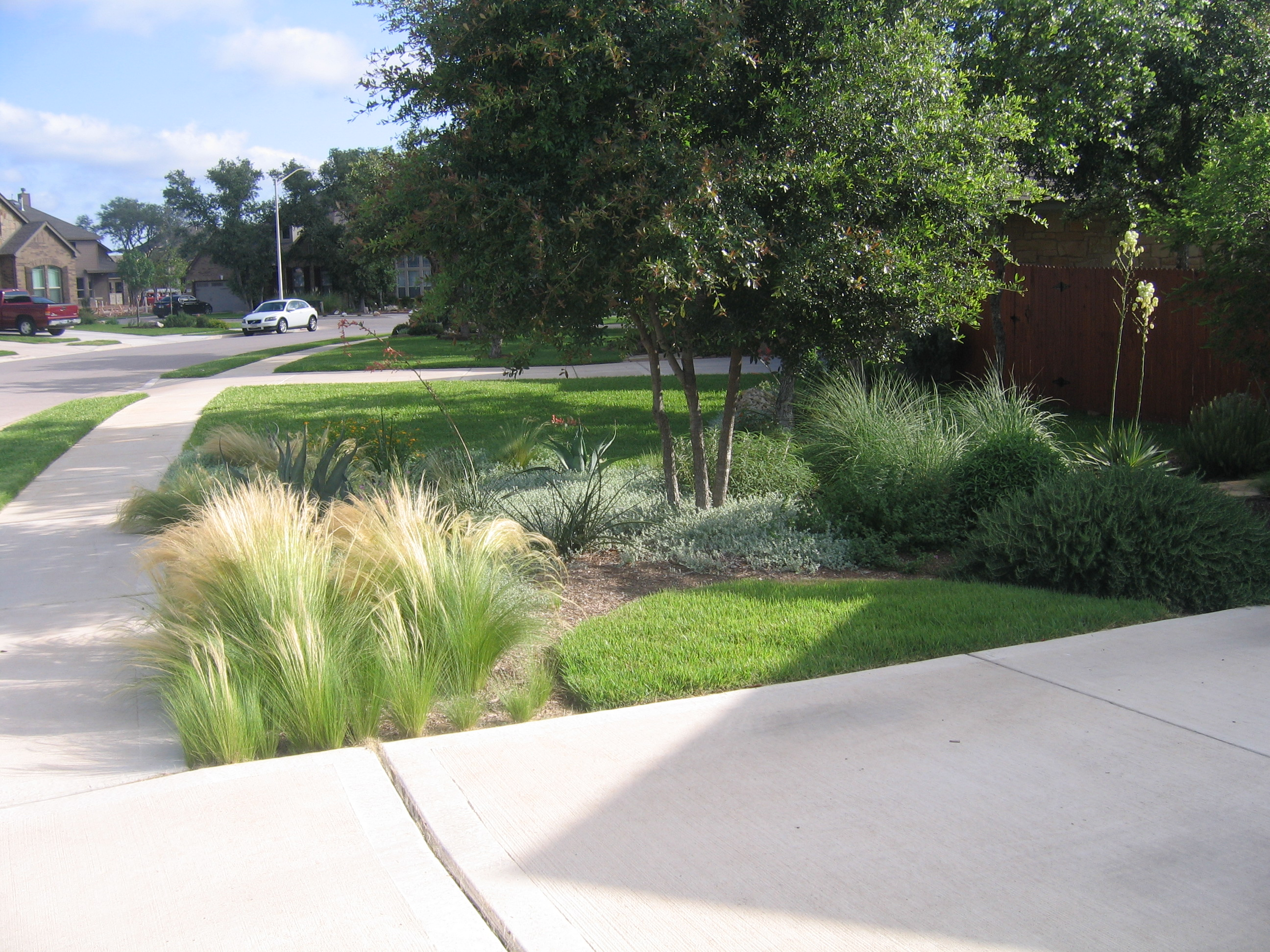 Walsh Trails- Cedar Park - Red Sun Landscape Design
